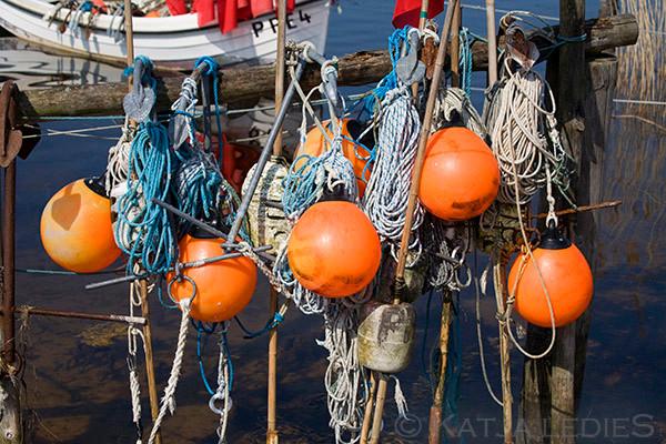 Fischland Darß-Zingst: Fischereibedarf