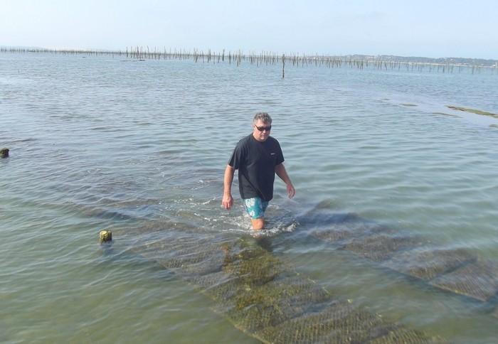 voir les huîtres cap ferret Pascaud Thierry