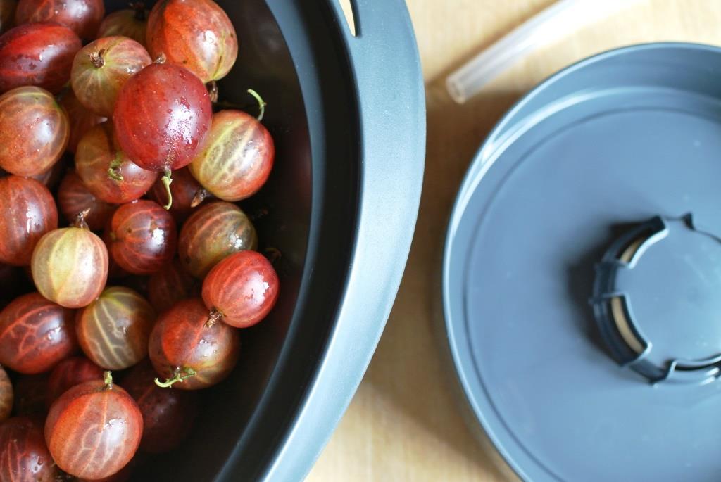 Früchte schnell und einfach entsaften im Thermomix® [Werbung enthalten]