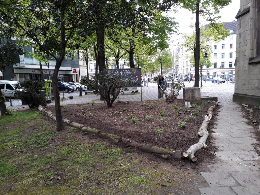 Der fertig angelegte Beetbereich, im Hintergrund der Neusser Platz. Die Totholzstücke bilden eine naturnahe Abgrenzung zum Weg und zur nicht vom NABU gepflegten Fläche (links vorne). Bild: B. Röttering