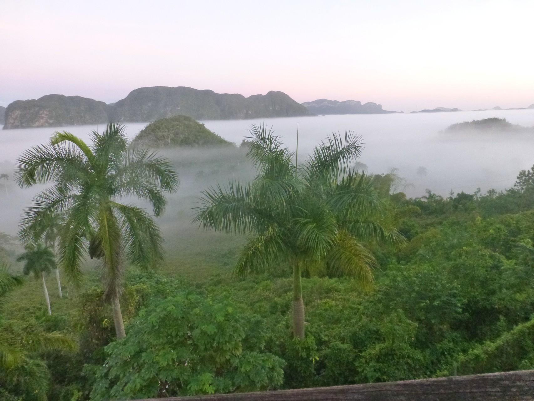 Kuba: Viñales Tal