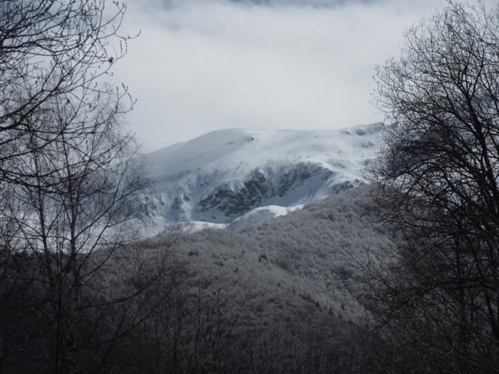 Schnee Berge Alpen Gipfel
