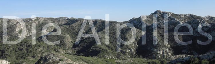 Les Alpilles Gebirge Kalkstein Avignon Wandern Natur Berge