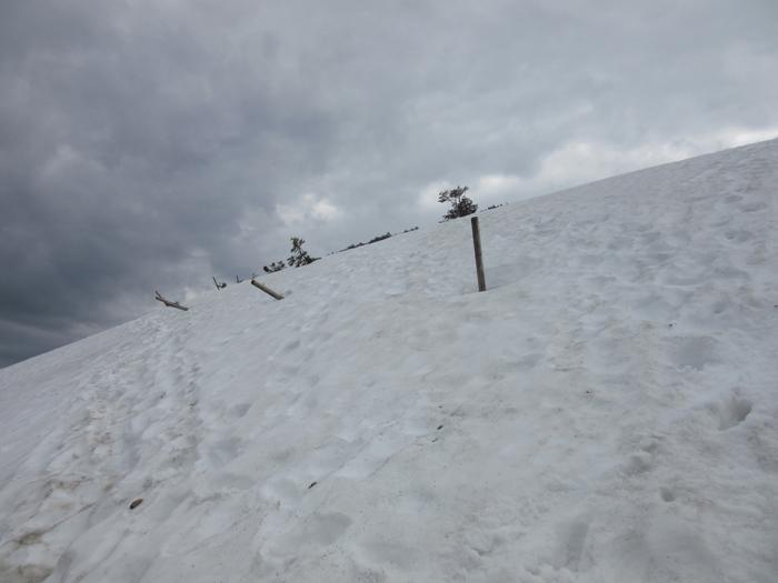Schwarzwald Wandern Schnee Belchen Westweg