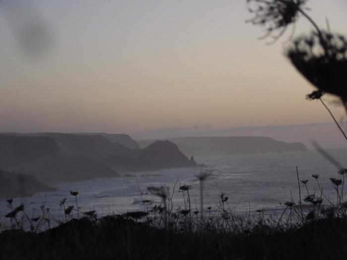 Algarve Natur