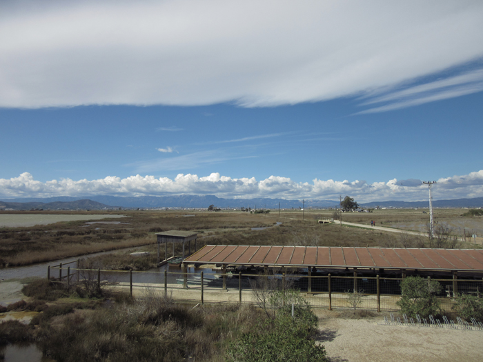 Ebro Delta Spanien