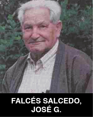 José Gerardo Falcés Salcedo