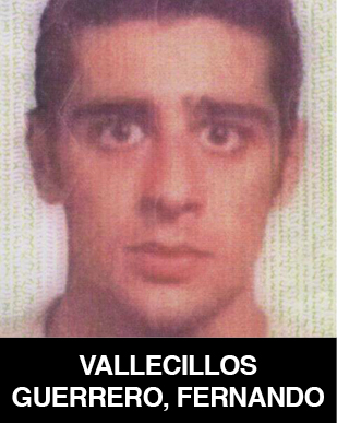 Fernando Vallecillos Guerrero