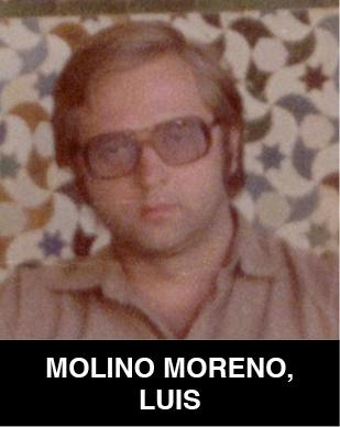 Luis Molino Moreno