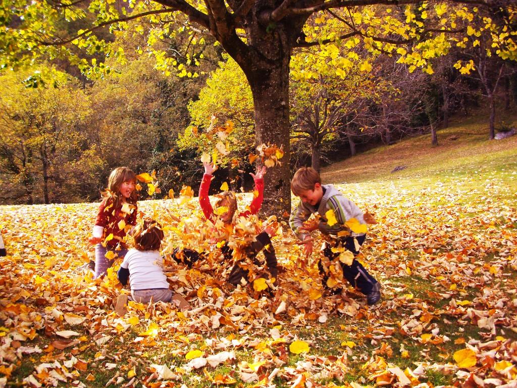 Jeux d'enfants en automne