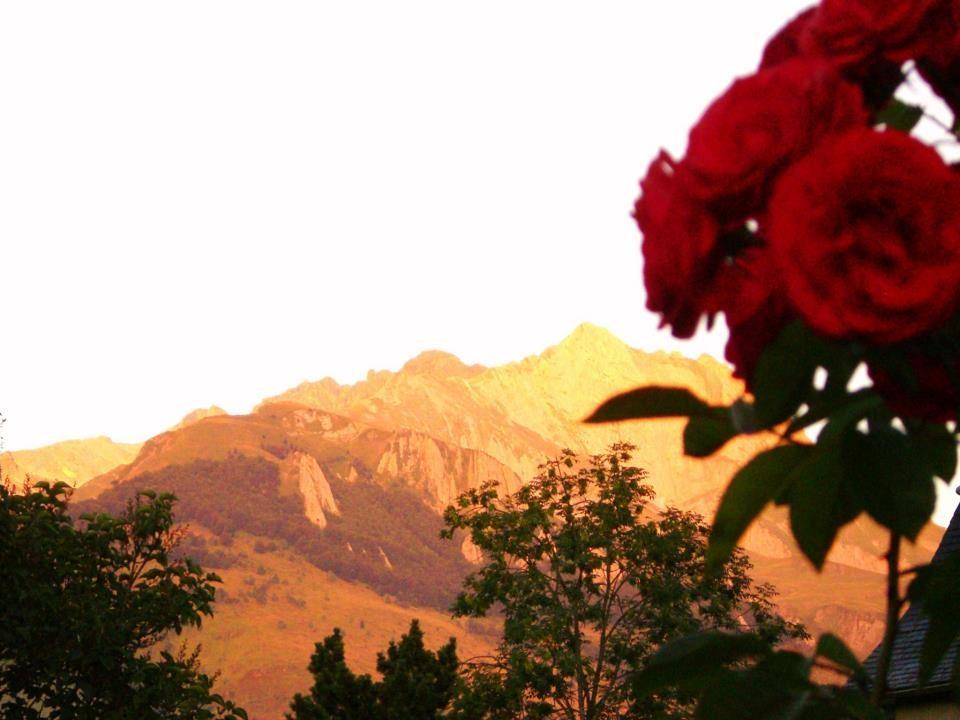 Rose Gabizos ( Val d'Azun)