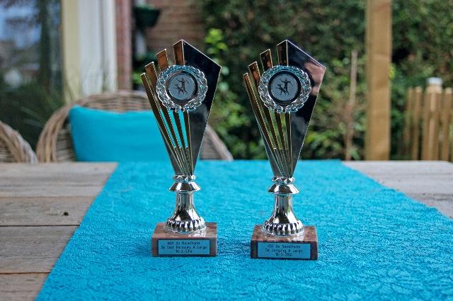 Nevelhorst - 2x 3e plaats + 2 promopunten : promotie naar B1