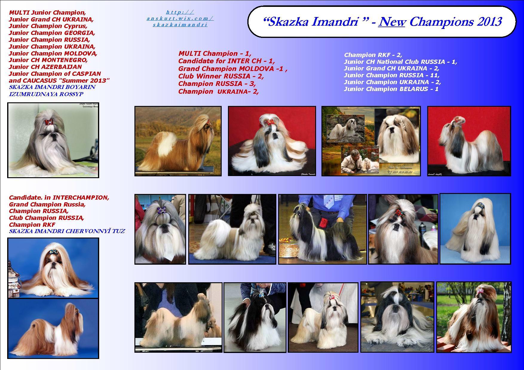 """New Champions Kennel """"SKAZKA IMANDRI"""" for 2013"""