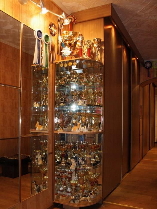 Немного наших кубков.../ Few of our cups ...