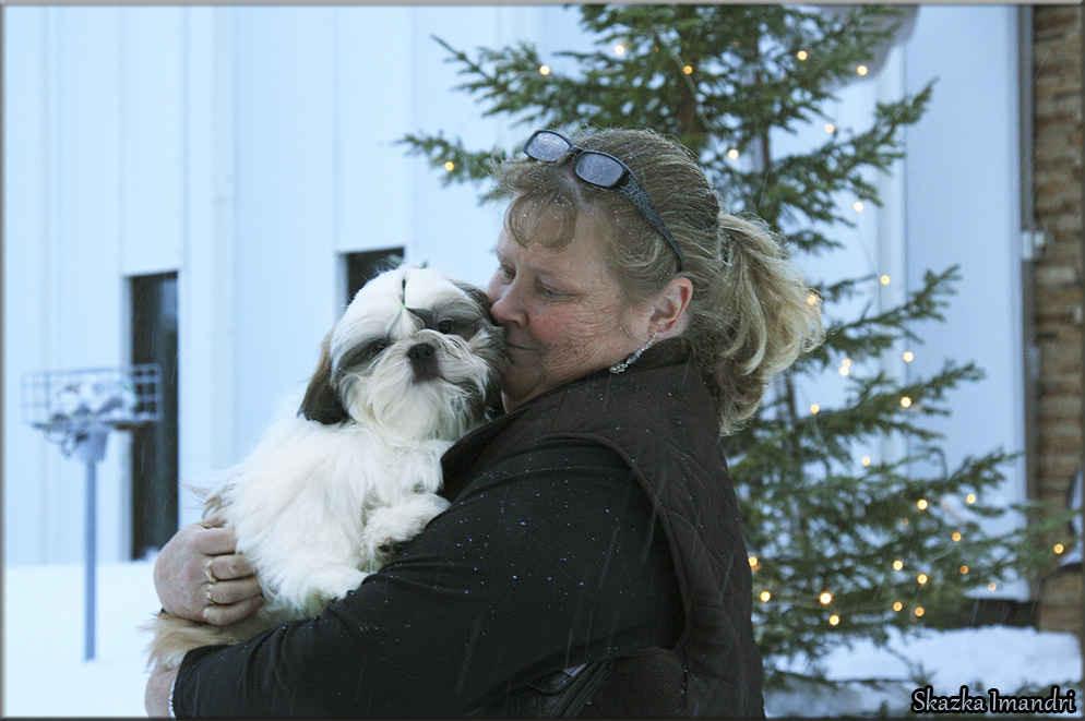 Our boy SKAZKA IMANDRI RADOSLAV moved to a new mother Leena in Finland.