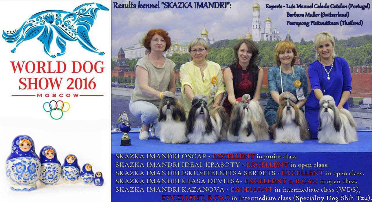 """Kennel """"SKAZKA IMANDRI"""" at the World Dog Show 2016"""