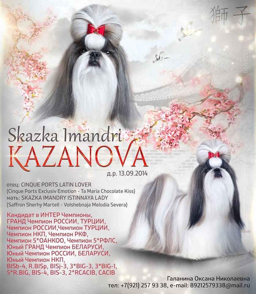 Cand. INTER CH, GRAND CH Skazka Imandri KAZANOVA