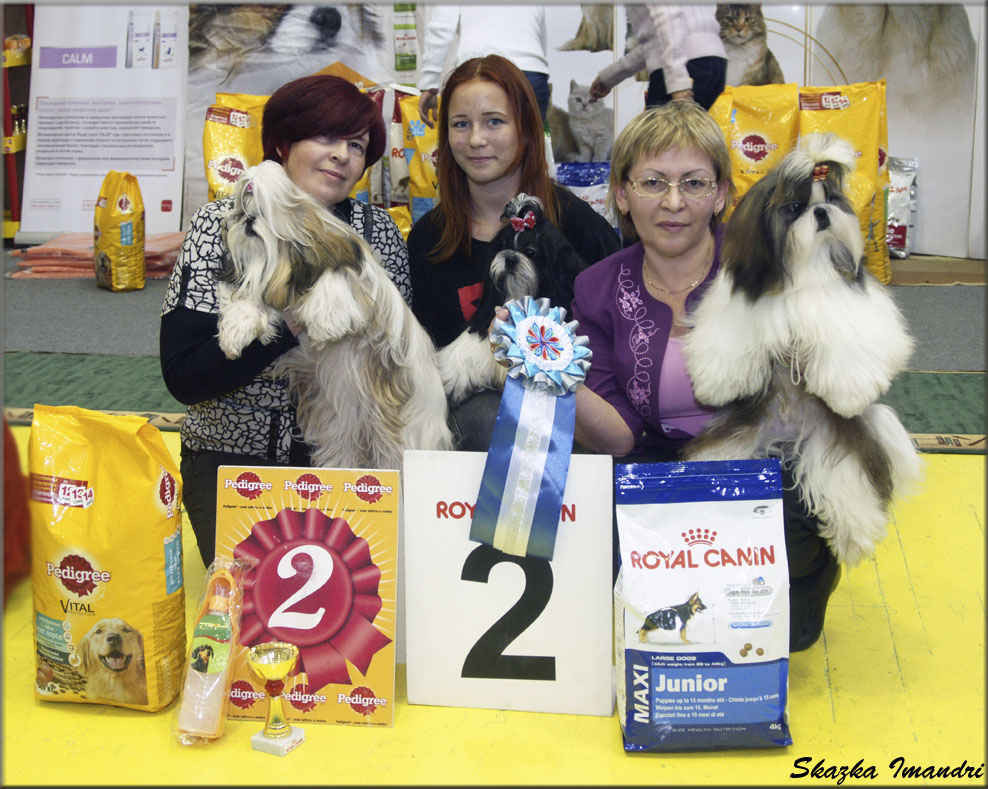 "Best Kennel Dog Show(mono),2хRez.winners(An, Monch)-Kennel""Skazka Imandri"""