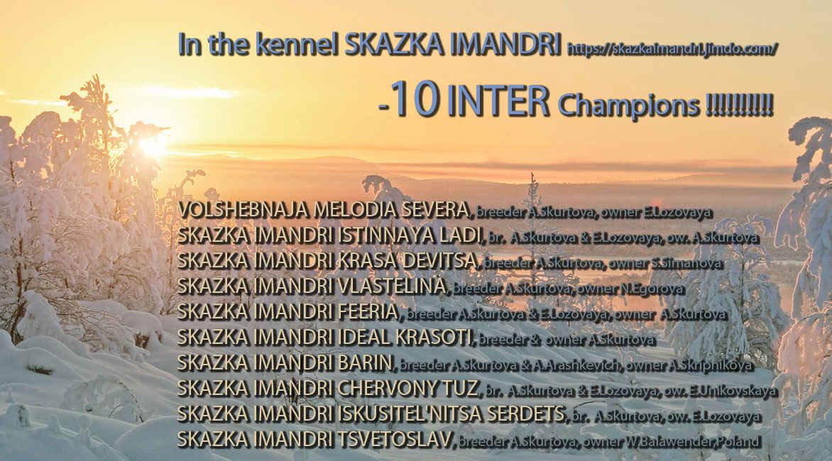 """The Kinel """"Skazka Imandri"""" 10 !!! INTER Champions !!!"""