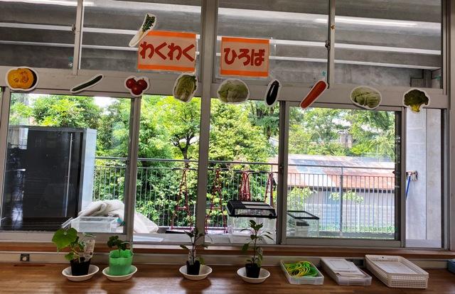 夏野菜(花から実がなるもの)の栽培が可能であれば1年生の経験と比べながら考えることができ、他教科の学習との関連も図りやすい。