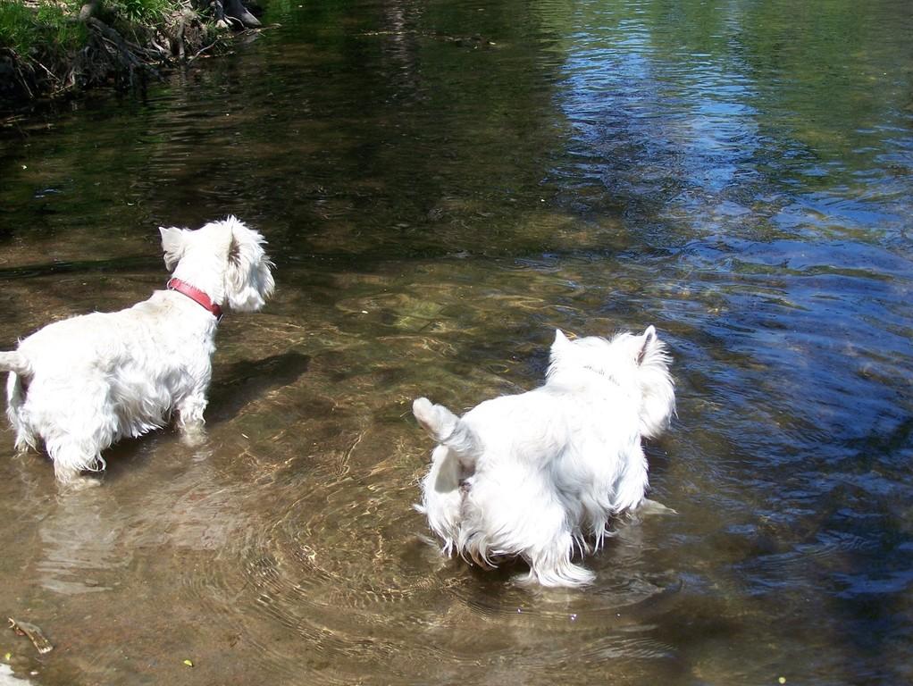 mit Freundin Peny geht es schwimmen