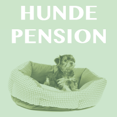Hundepensionen und Hundehotels in Berlin