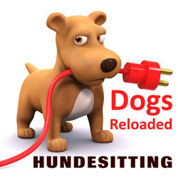 Hundepension Berlin Zehlendorf  - Dogs Reloaded