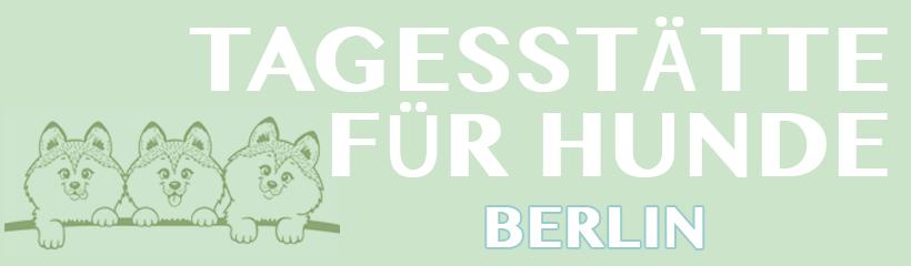 Hundetagesstätte, HUTA Berlin, Kindergarten Hund