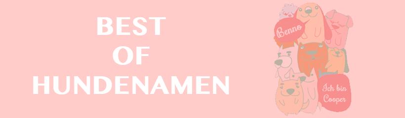 Best of Hundenamen: Die besten Namen für Hunde