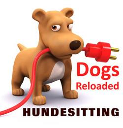Hundekindergarten Zehlendorf - Dogs Reloaded
