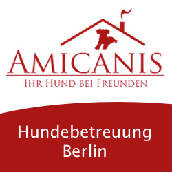 Hundetagesstätte Charlottenburg-Wilmersdorf - amicanis