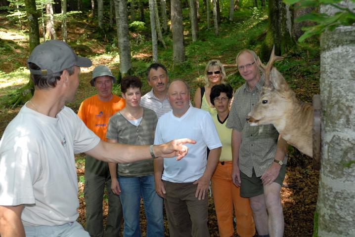 Erläuterungen auf dem Naturpfad über den Rehbock