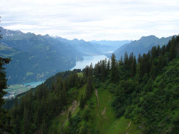 Aussicht von der Stelihütte auf den Brienzersee