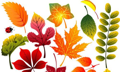 Осенние листья скачать бесплатно