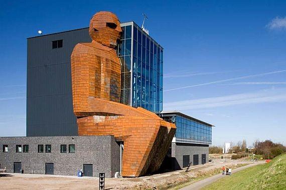 музей анатомии