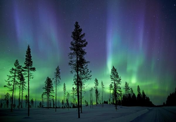 Фотография зима