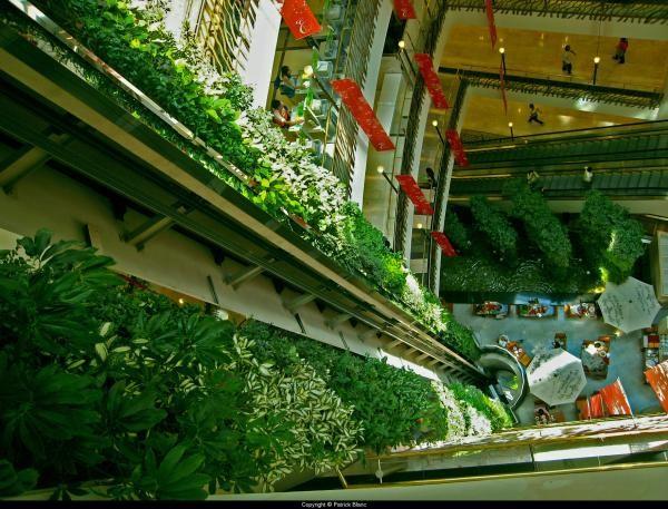 верткальные сады