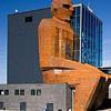 Самый необычный музей анатомии