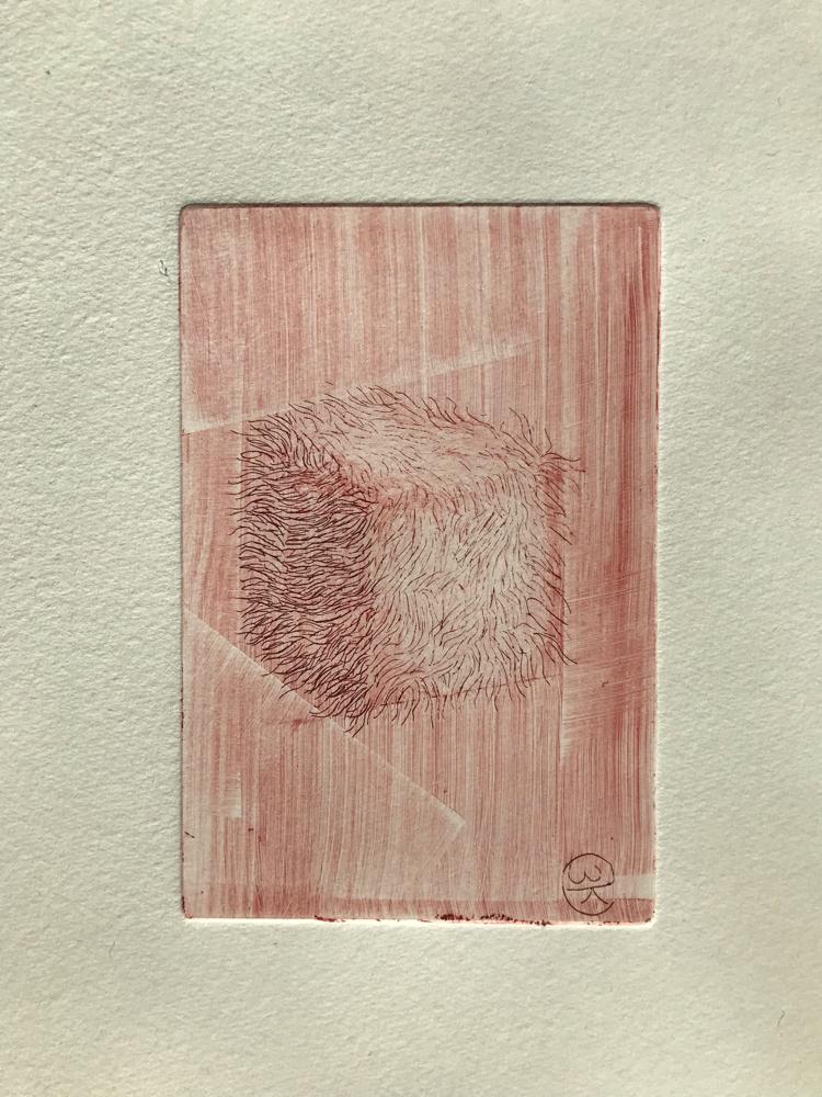 Hairy die I , Engraving / 32 x 26 cm / 2019 / 20