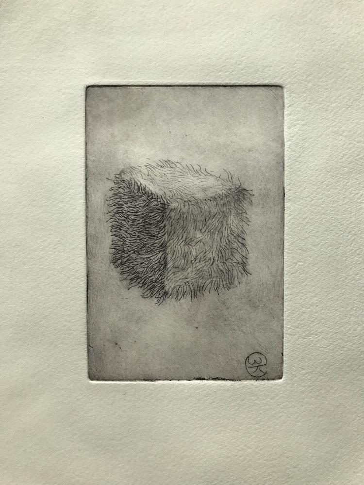 Hairy die III , Engraving / 32 x 26 cm / 2019 / 22
