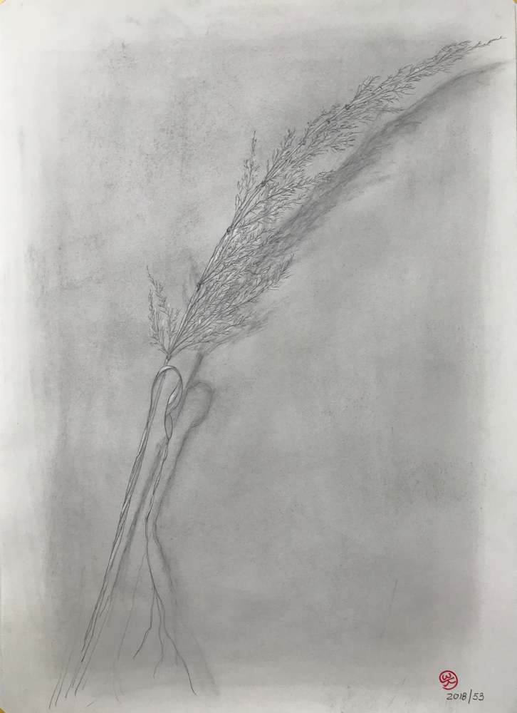 Autumn , Pencil on paper / 59,7 x 42 cm