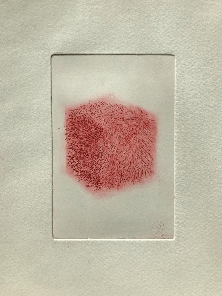 Hairy die II , Engraving / 32 x 26 cm / 2019 / 21