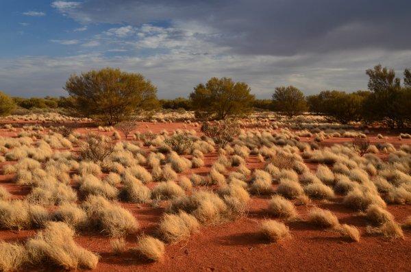warme Farben, warme Stimmung (australisches Outback)
