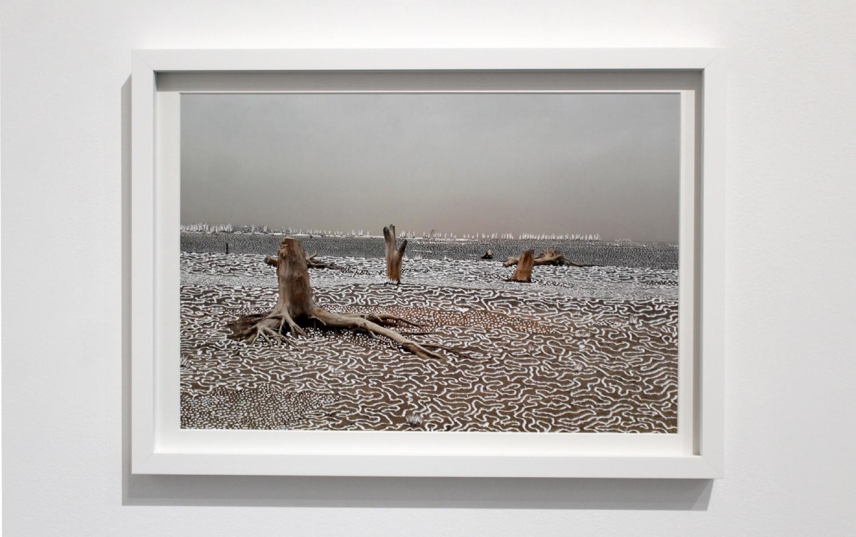 Raphaëlle Peria, Quand les eaux se retirent #3, grattage sur photographie, 30 x 45 cm, 2020