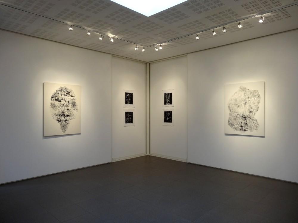 """Vue de l'exposition Cécile White, Empreinte carbone. A gauche : Générations"""". Au centre : """"Radiographies de mes voisins"""". A droite : """"Puzzle""""."""