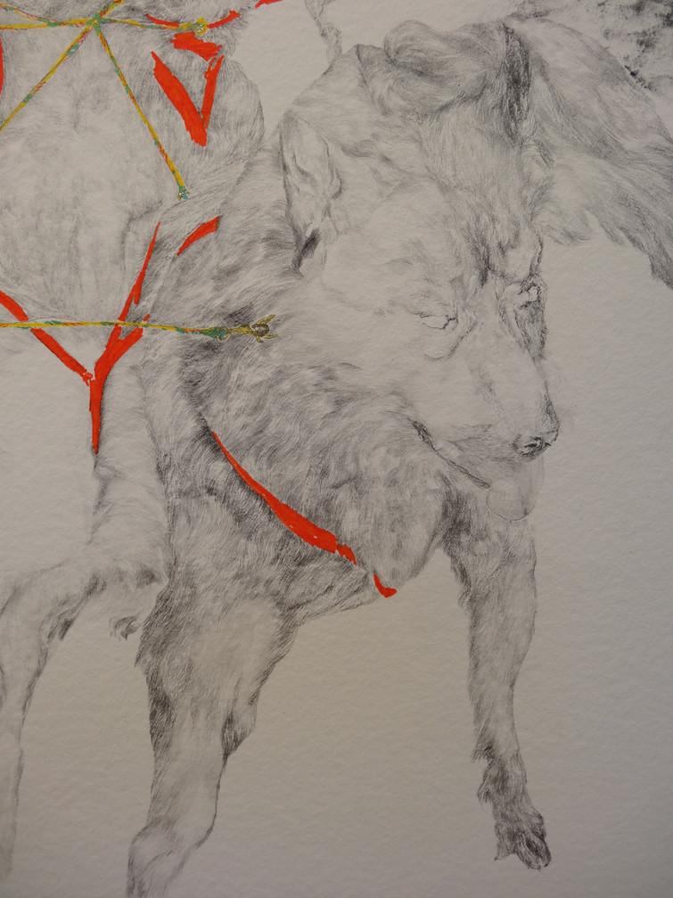 Noémie Sauve, L'attelage (détail) - Dessin sur papier moulin du gué, 130x80cm, 2015. Mine graphite, fusain, Bic, feutre, stylos divers.