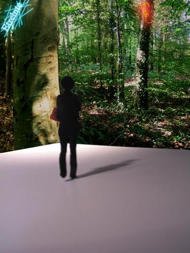 Emmanuelle Lauer, Les lumières de la terre, 2011.