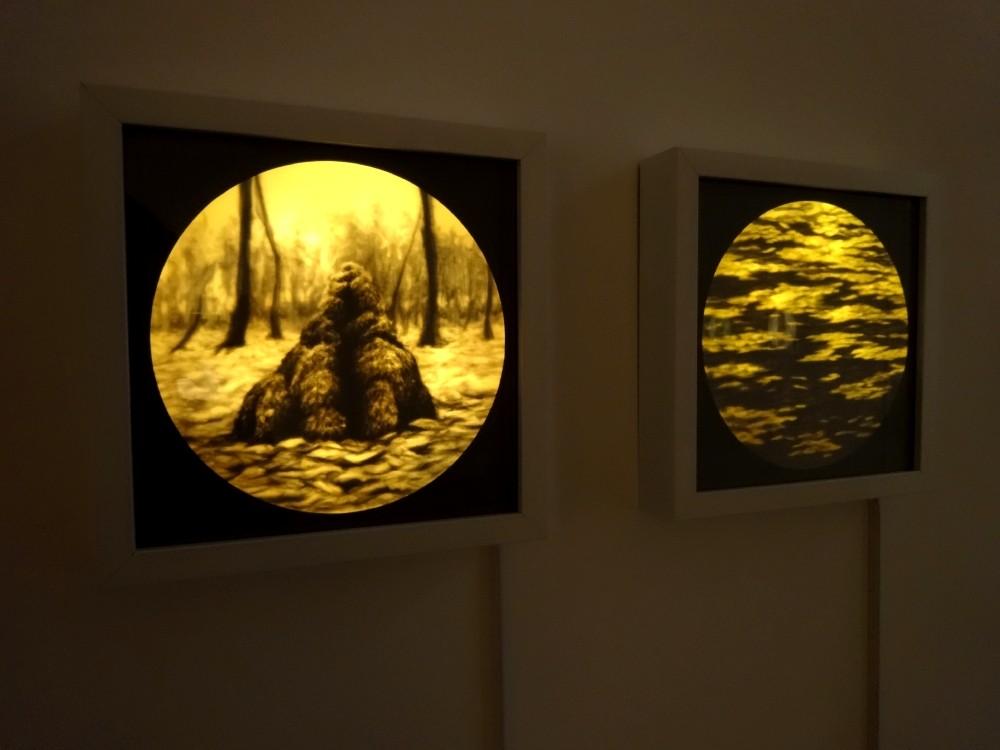 Vue de l'exposition Eunji Peignard-Kim, Drapés de paysage, 2015