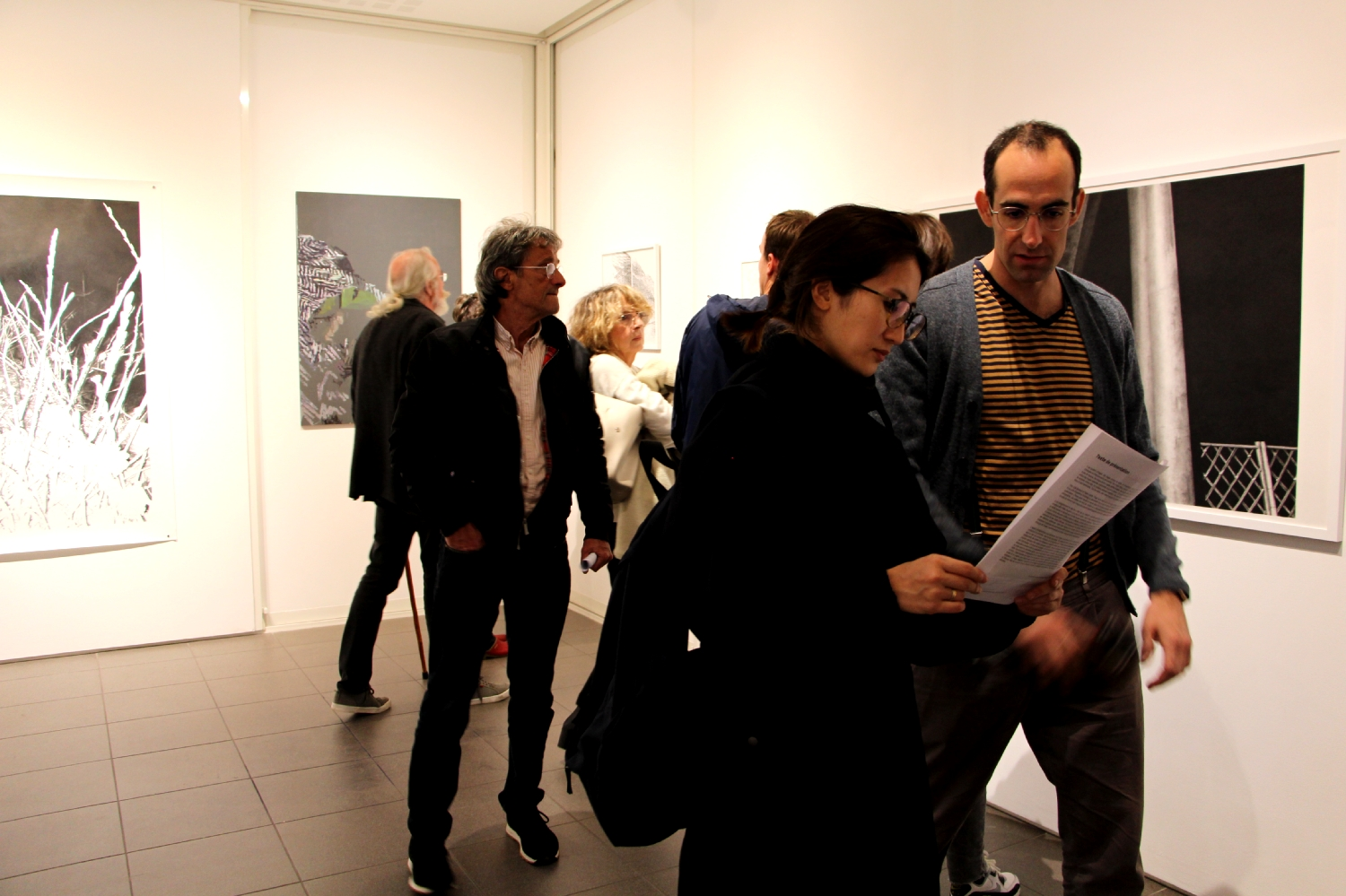 Vernissage de l'exposition Julie Bonnaud et Fabien Leplae, Plasmes