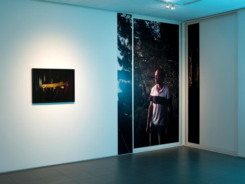 Vue de l'exposition Vincent Malassis, La gaule